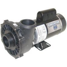 PUMP, 1.5HP 48FR 2 SPD 2 INCH 115V