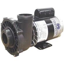 PUMP, 2HP 56FR 2 SPD 2 INCH 230V