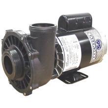 PUMP, 3HP 56FR 2 SPD 2-1/2 INCH 230V