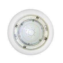 Aqua/Lamp Rainbow Rays - White LED<br>100 ft. of Cable