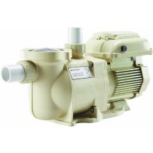 Pool Pumps Pentair SUPERFLO® VS VARIABLE SPEED PUMP (342001)