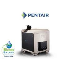 Pool Heaters Pentair MasterTemp 125 Low NOx Pool Heater (461061)