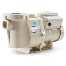 Pool Pumps Pentair INTELLIFLO® VARIABLE SPEED® (011018)