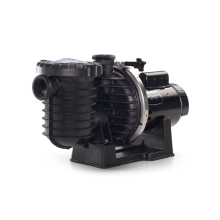 Pool Pumps Pentair Max-E-Pro® (P6E6D-205L)