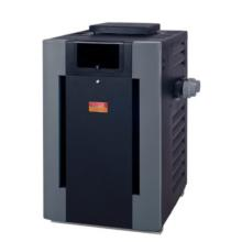 Fan Assisted Natural Gas Pool/Spa Heater R407