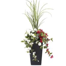 Dracaena and Red & White Hibiscus Potted Floral Arrangement