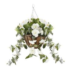 Hanging Basket with White Hibiscus Flowers