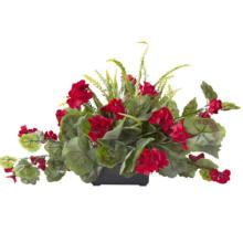 Red Geranium Centerpiece