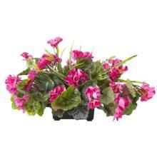 Pink Geranium Centerpiece